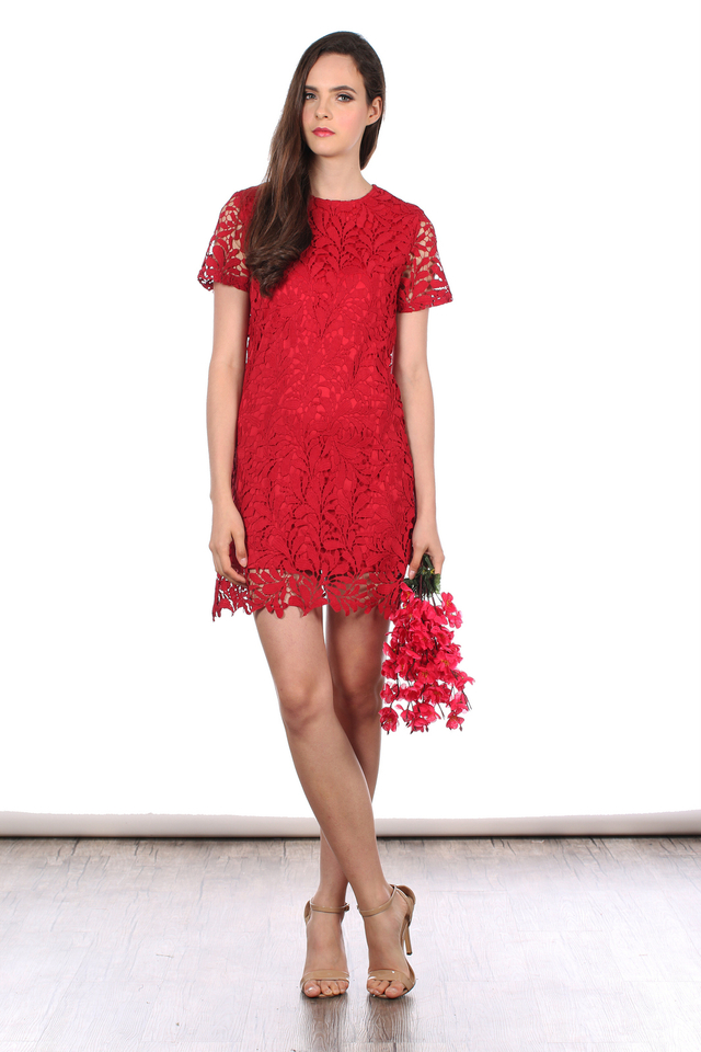 TSW Poet Crochet Dress in Deep Red