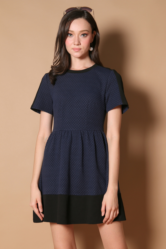 Danielle Textured Sleeve Dress in Navy