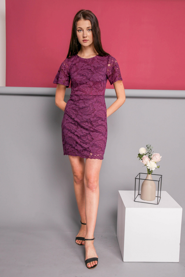 Judy Lace Dress in Deep Purple