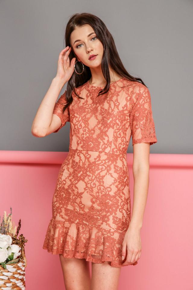 Brielle Lace Dropwaist Dress in Terracotta