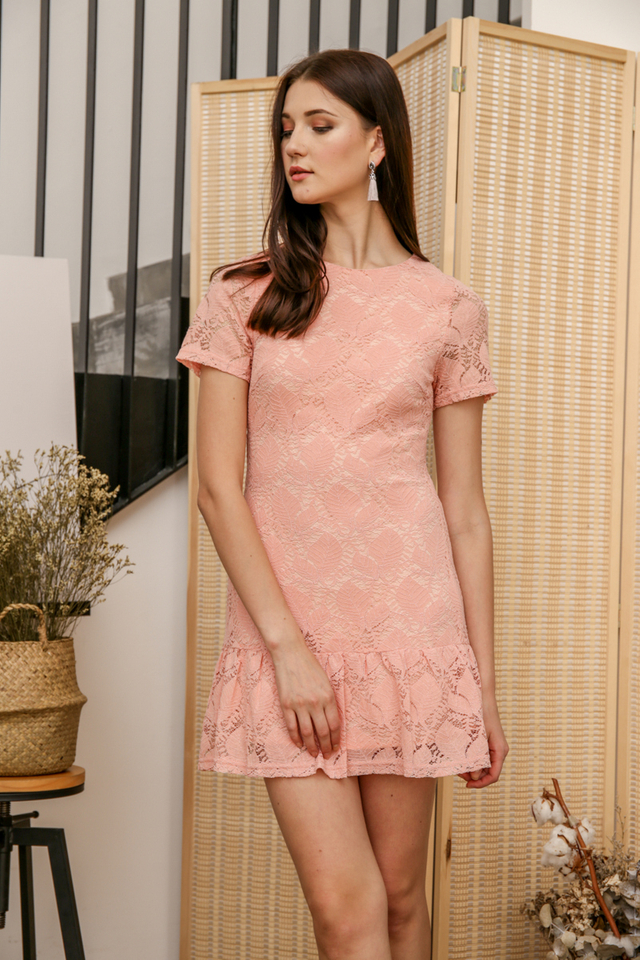 Spring Lace Drop Waist Dress in Peach