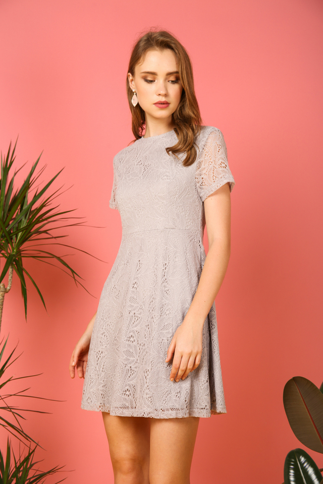 Elyse Lace Skater Dress in Grey