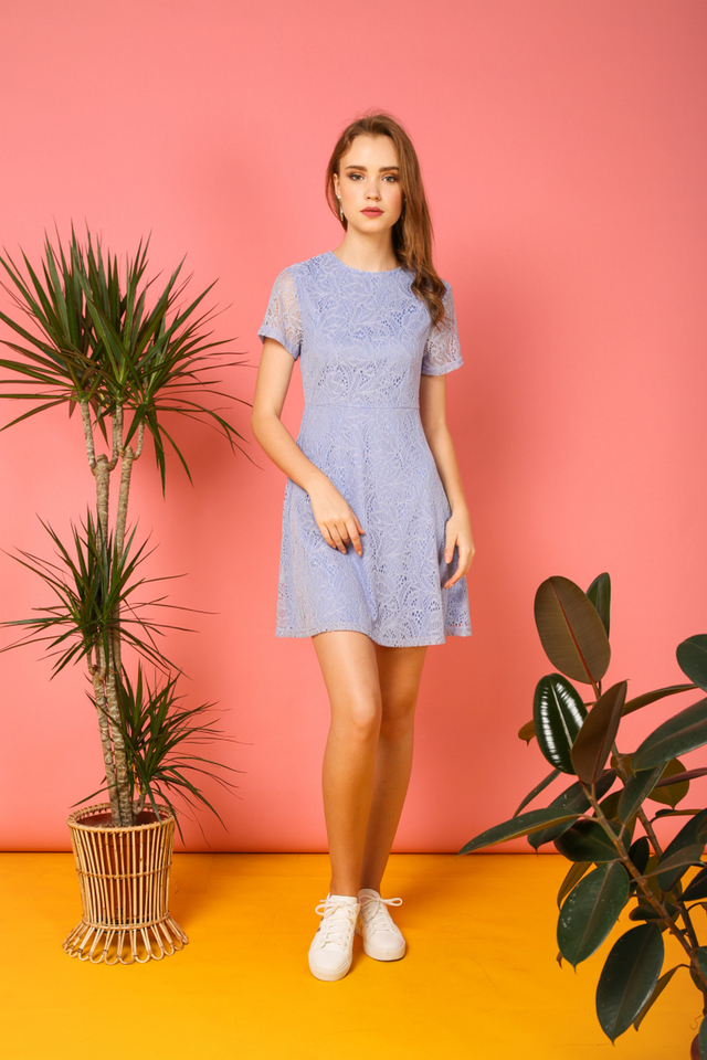 Elyse Lace Skater Dress in Periwinkle (L)