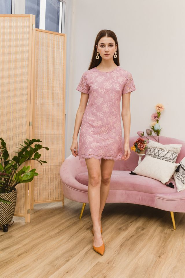 Nerida Lace Shift Dress in Pink
