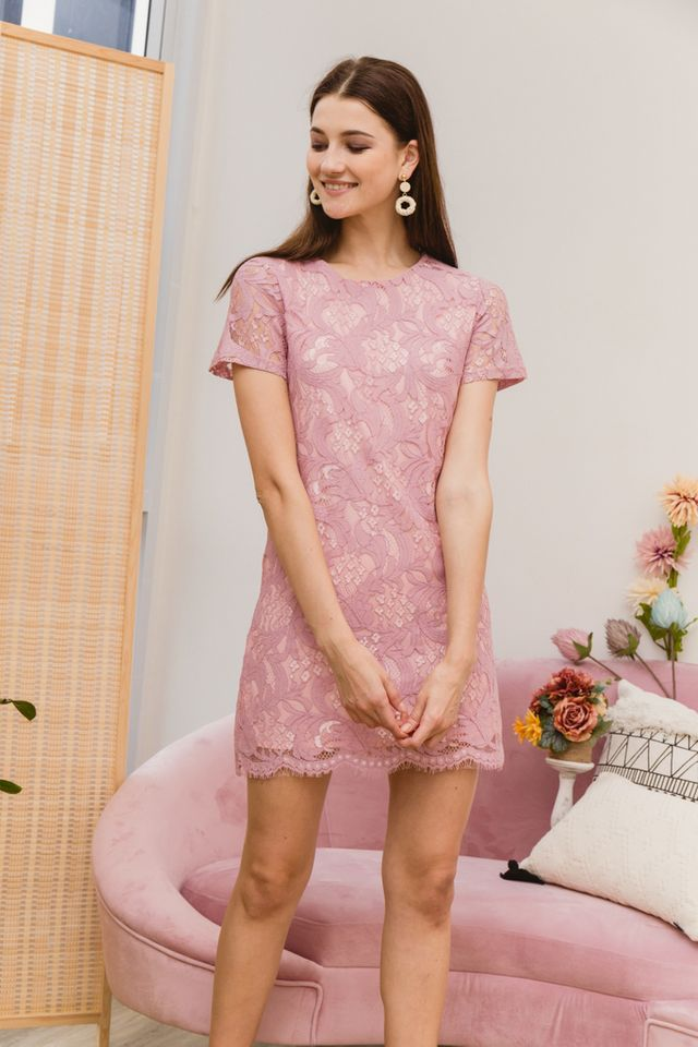 Nerida Lace Shift Dress in Pink (XS)