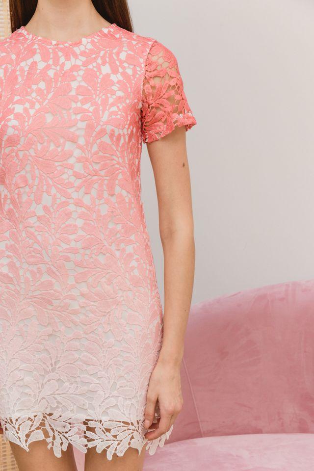 Callie Ombré Crochet Dress in Rose