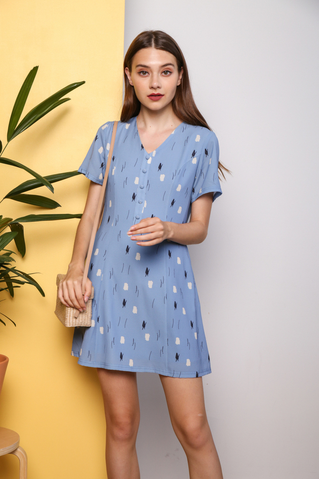 Salena Printed Button Flare Dress in Blue
