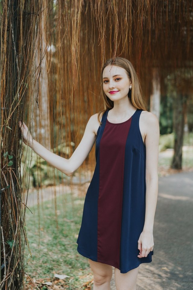 Steff Colourblock Trapeze Dress in Wine