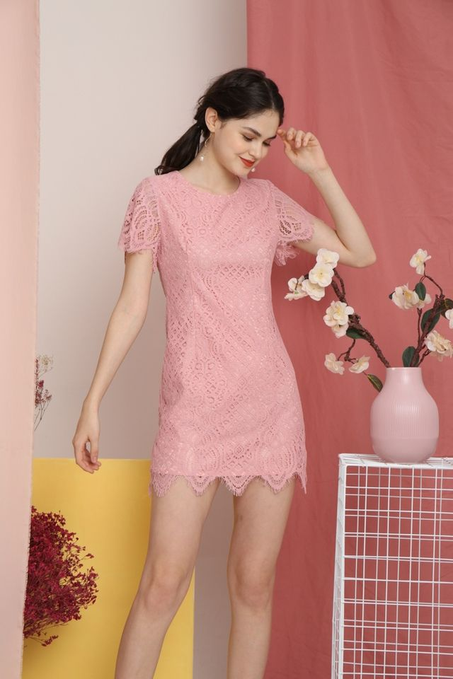 Gladys Premium Crochet Scallop Hem Dress in Pink