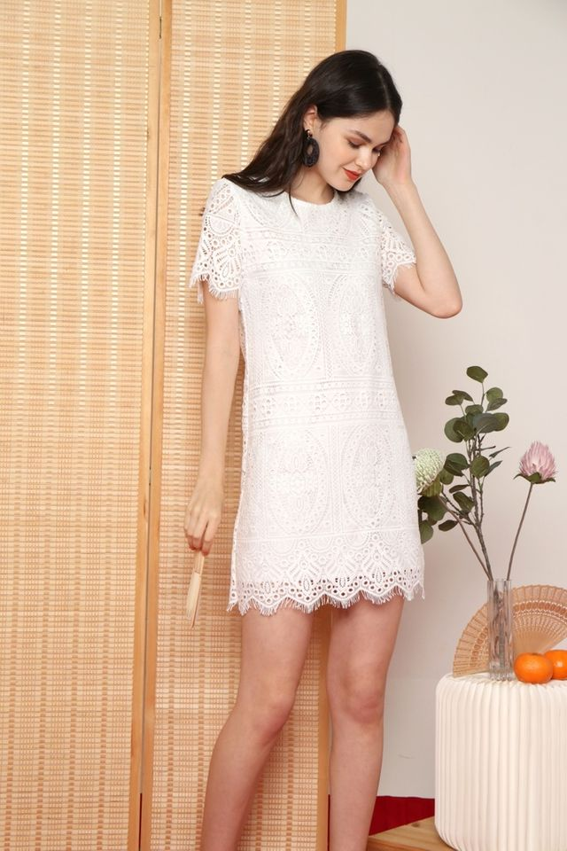 Odina Premium Crochet Sleeved Dress in White