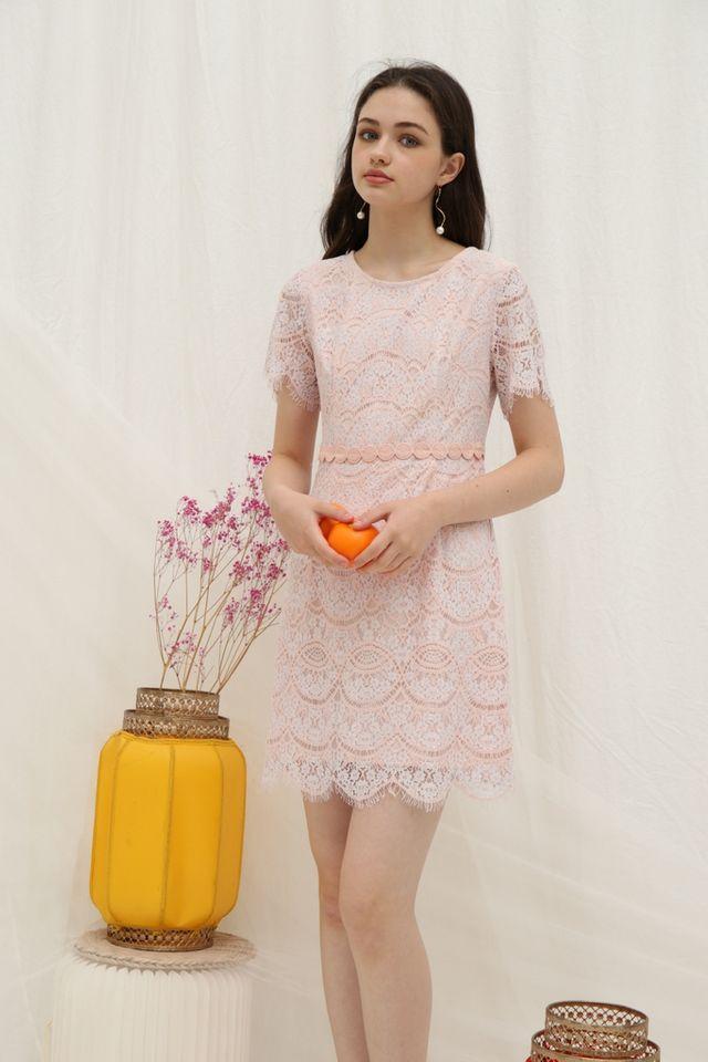Jules Premium Lace Scallop Hem Dress in Pink