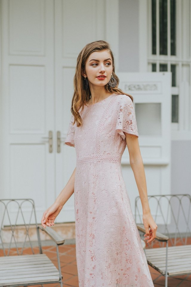 Brenda Premium Lace Sleeved Midi Dress in Pink