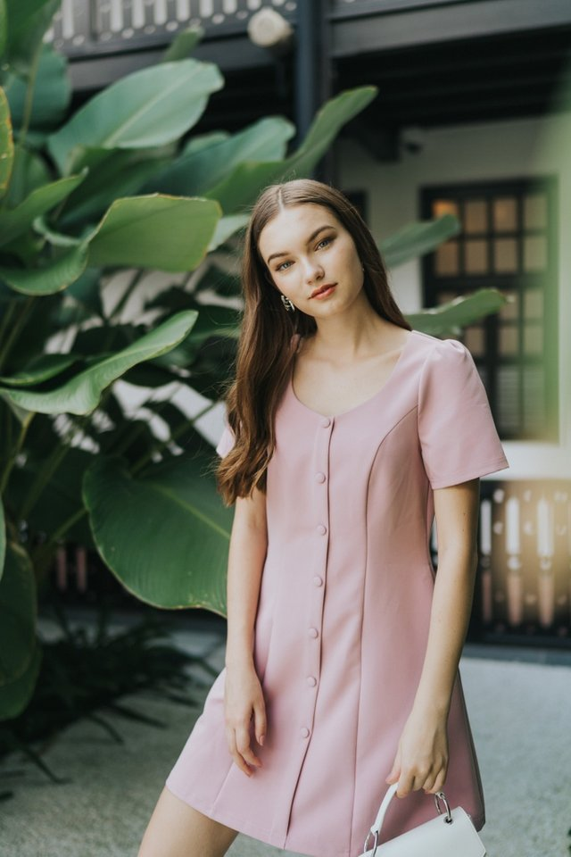Celeste Button Panel Dress in Pink