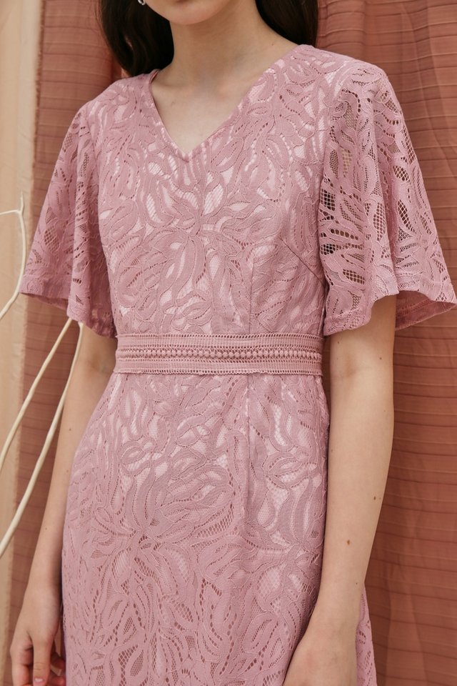 Fanny Premium Lace Sleeved Dress in Pink