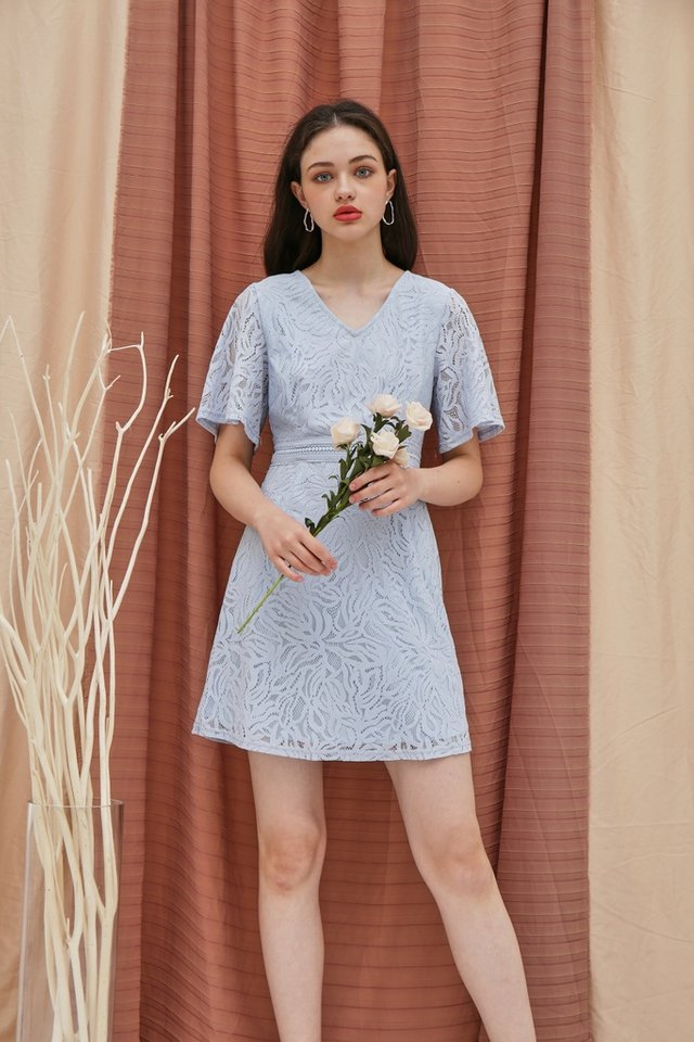 Fanny Premium Lace Sleeved Dress in Blue