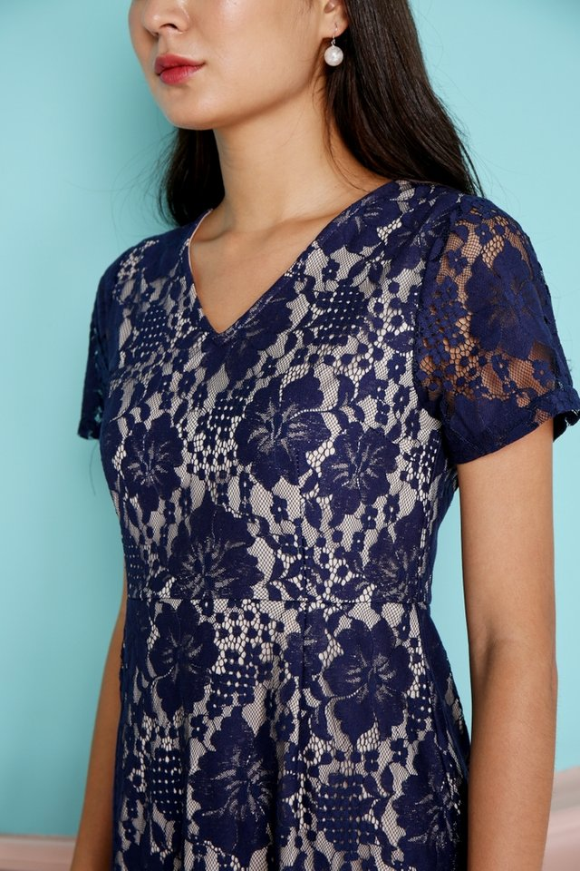 Adalene Lace Dropwaist Dress in Navy