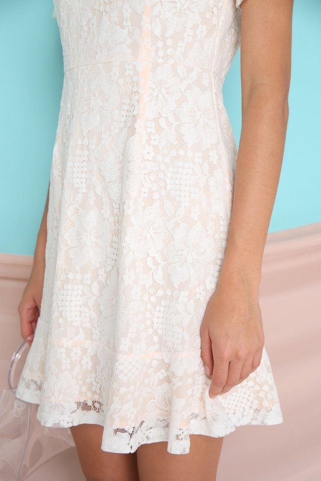 Adalene Lace Dropwaist Dress in white