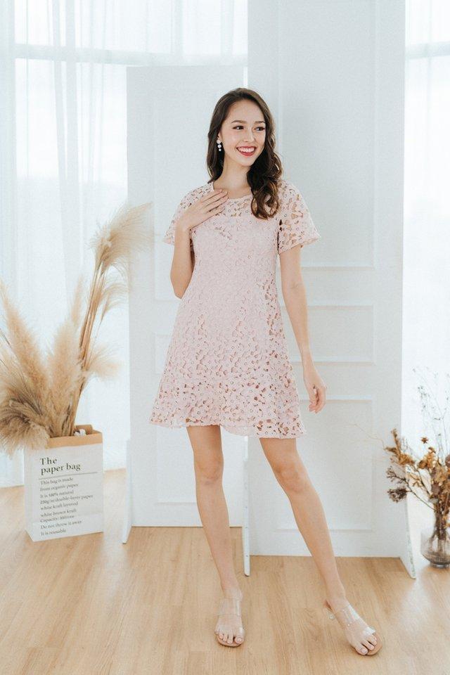 Nyomi Crochet Dropwaist Dress in Blush